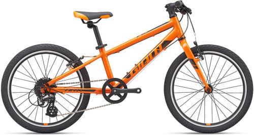 Giant ARX 20 2020 First Bike bike