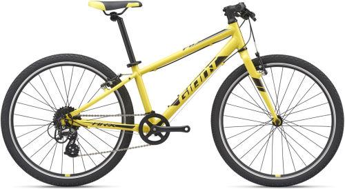Giant ARX 24 2020 First Bike bike