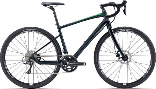 Giant Revolt 2 2017 Endurance bike