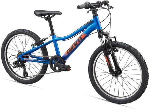 Giant XtC Jr 20 Kids Bike 2020 First Bike bike